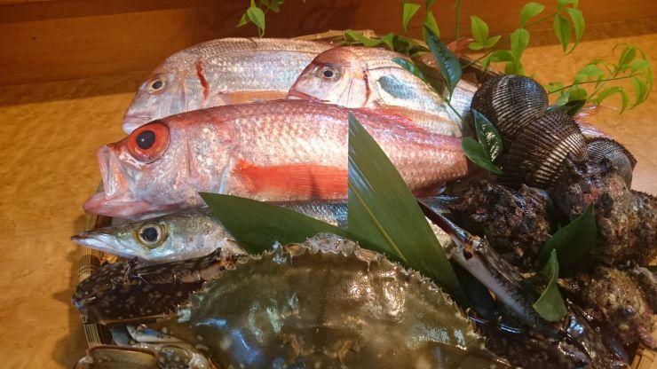 奥三河で美味しい魚