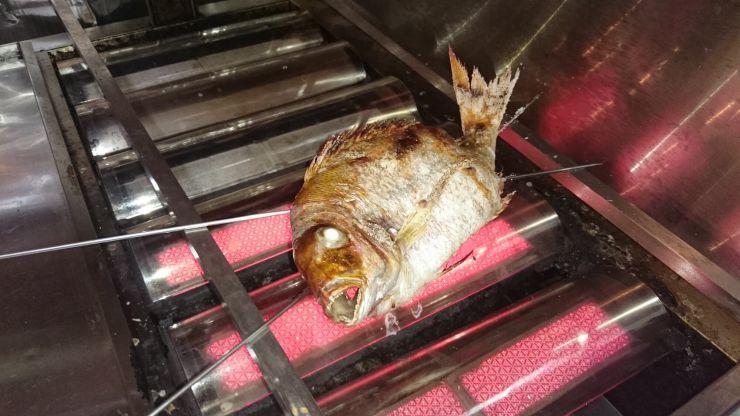 焼きたての魚